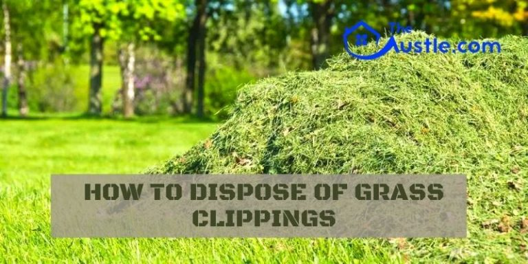 10 Unique Ways Is How To Dispose Of Grass Clippings