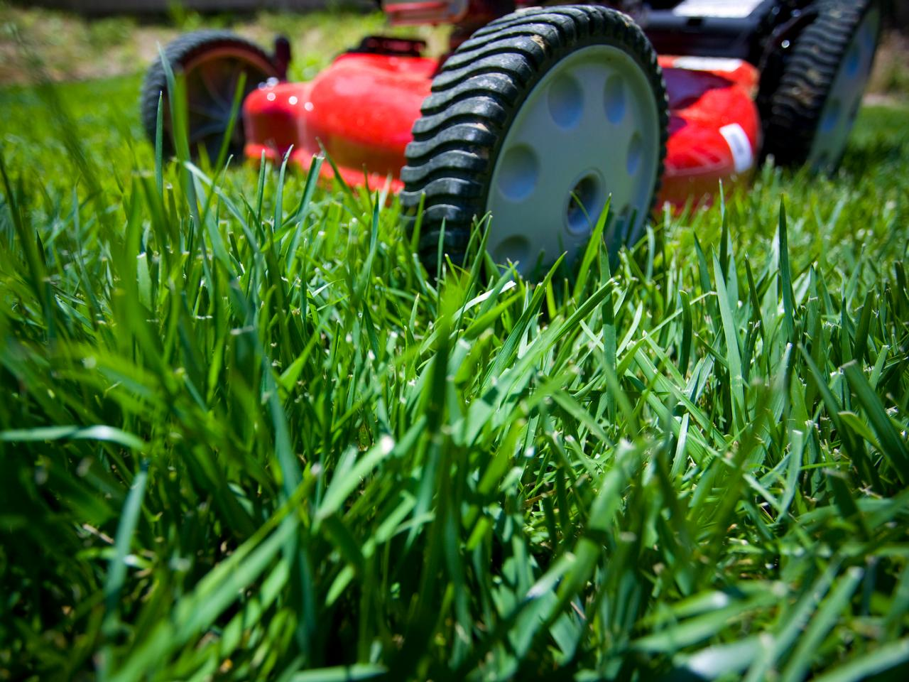 Be Smart About Lawn Care