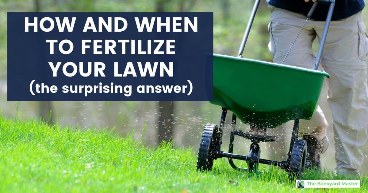 How Often Should I Fertilize My Lawn? (The Surprising ...