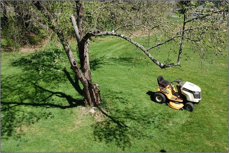 How To Bid On Lawn Care Jobs