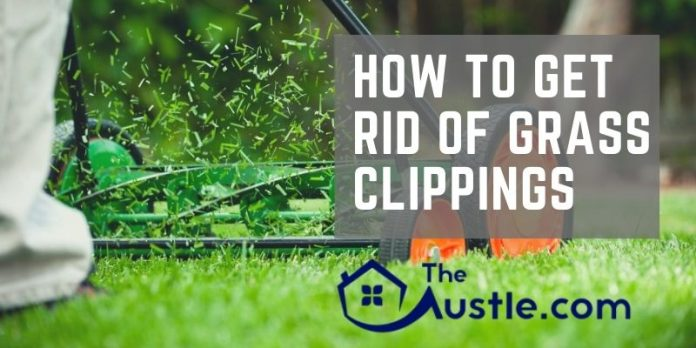 how to get rid of grass clippings easily with pro tips