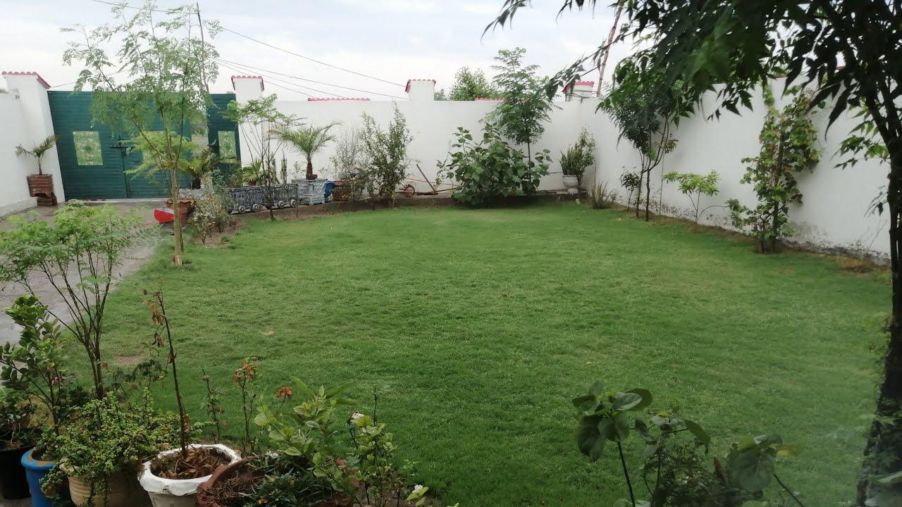 How To Improve Lawn Grass Thickness. लà¥à¤¨ à¤à¥?रास à¤à¥ थिà¤à¤¨à¥à¤¸ ...