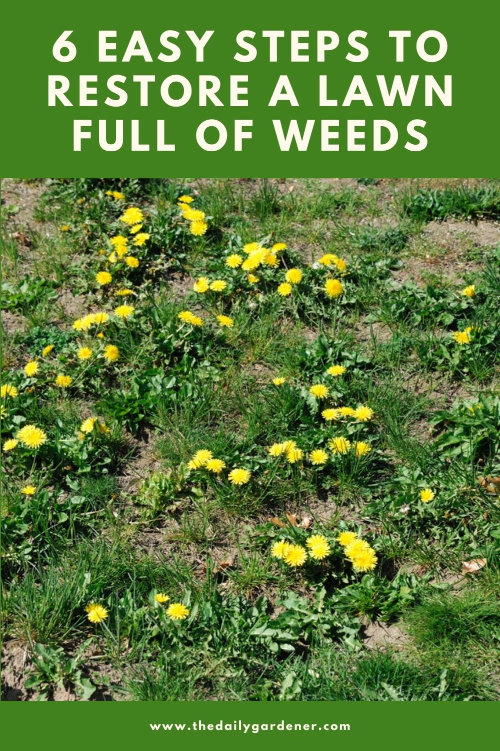How To Treat Your Own Lawn For Weeds : The Natural Way To ...