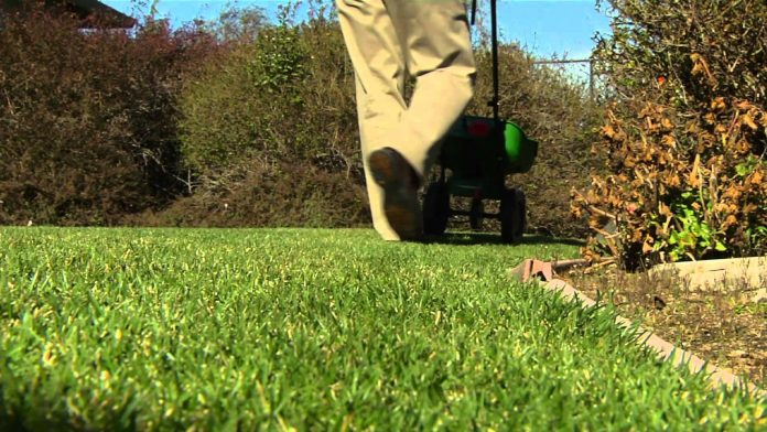 how to use lawn spreaders and sprayers ace hardware
