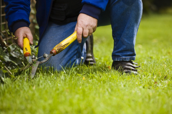lawn care business pricing tips ideas for estimating
