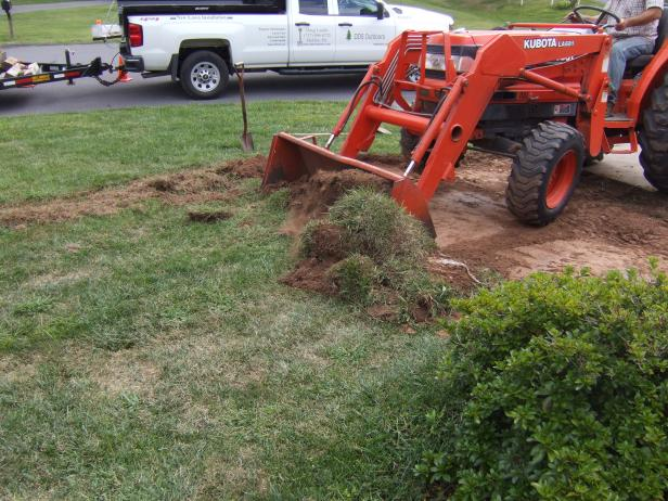 renovate or redo your lawn landscaping hgtv