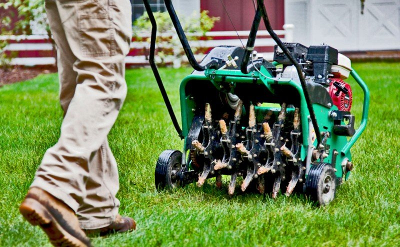 Should I Aerate my Lawn?