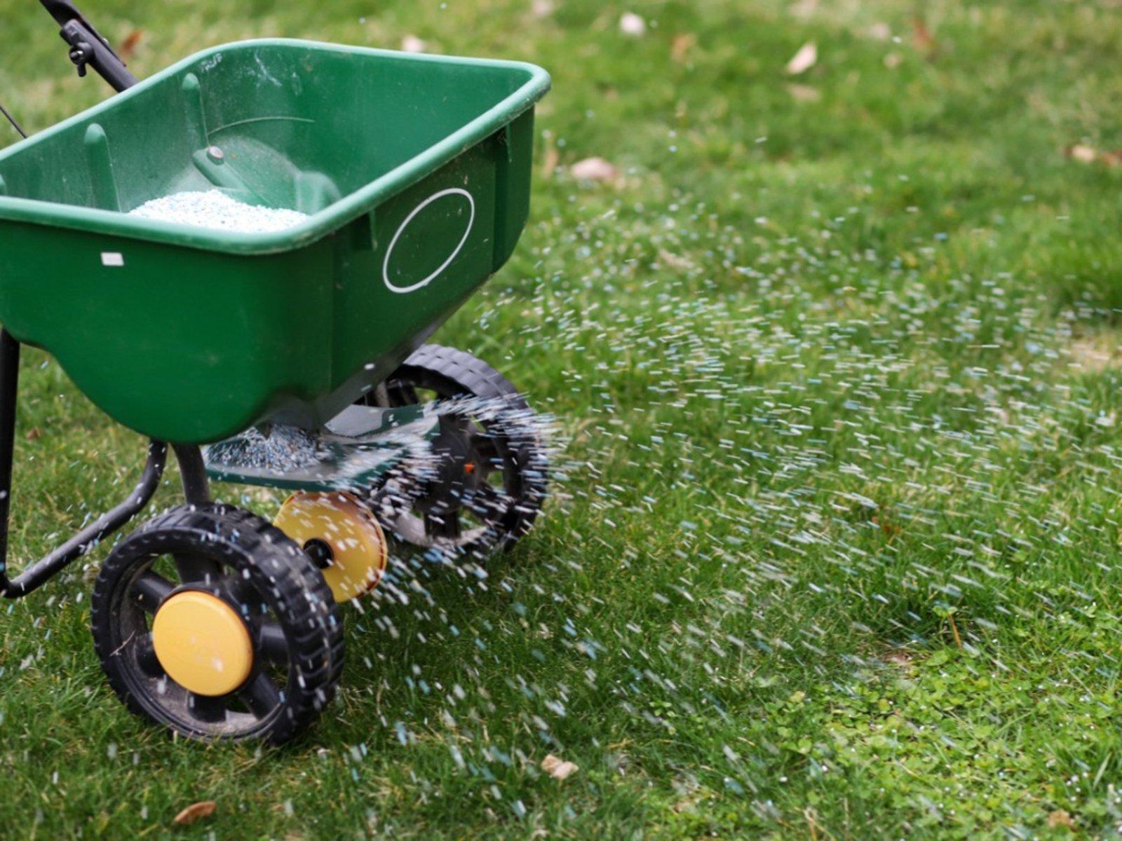 Tips On Feeding Lawns
