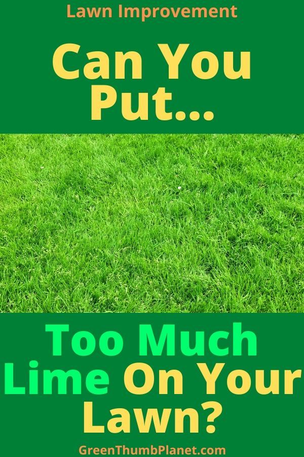 too much lime on your lawn in 2021 lime for lawns