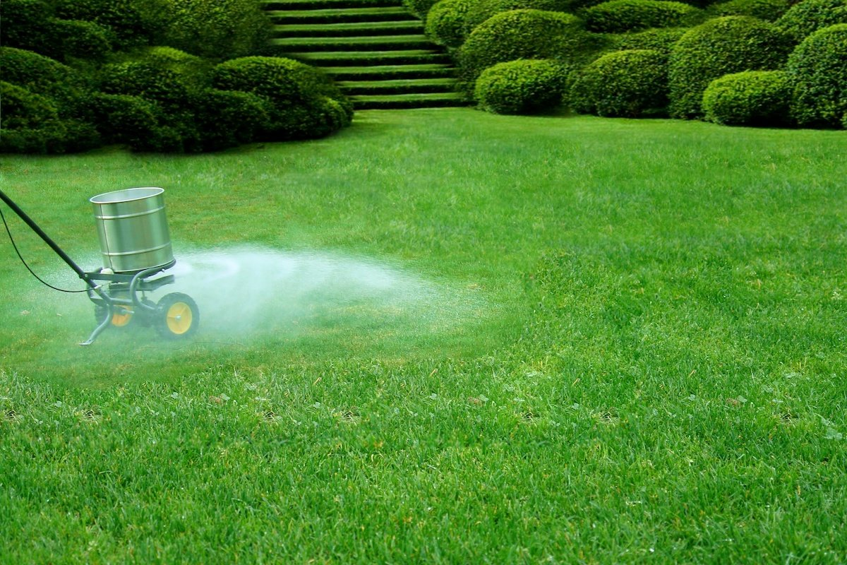 What Lawn Fertilizer Should I Be Using Now?